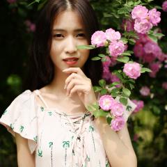 蔷薇花下的少女