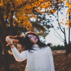 阳光洒在你和秋叶上