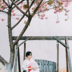 『樱花飞舞的巷道』